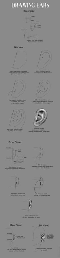 Drawing Ears Tutorial