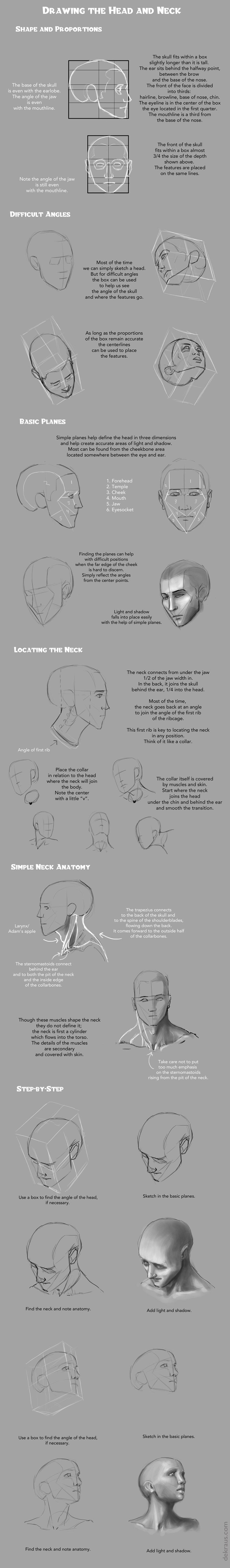 Drawing Heads and Necks Tutorial by banjodi