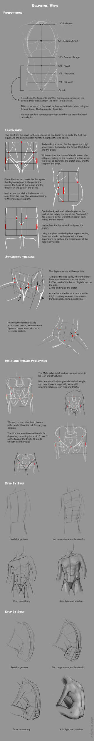 Drawing Hips Tutorial