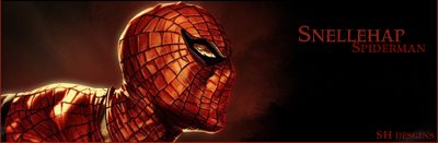 spiderman by mick1295