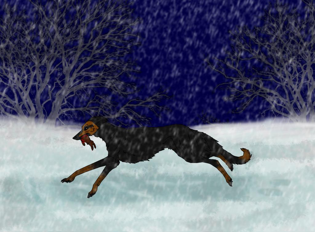 Stian winter trial by LoneShadowWolf