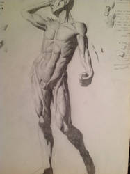 Study of Anatomy of the Flayed figure... by LovinFineArtistry