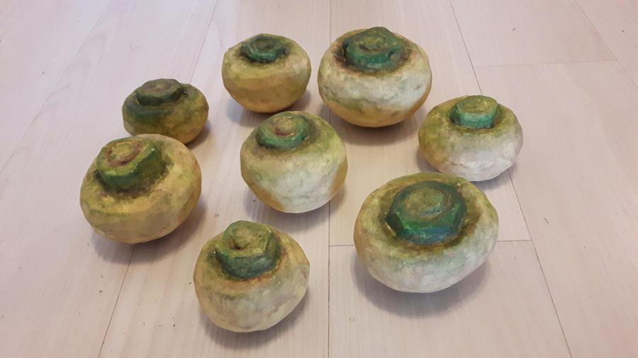 Turnip by Dinogomonni