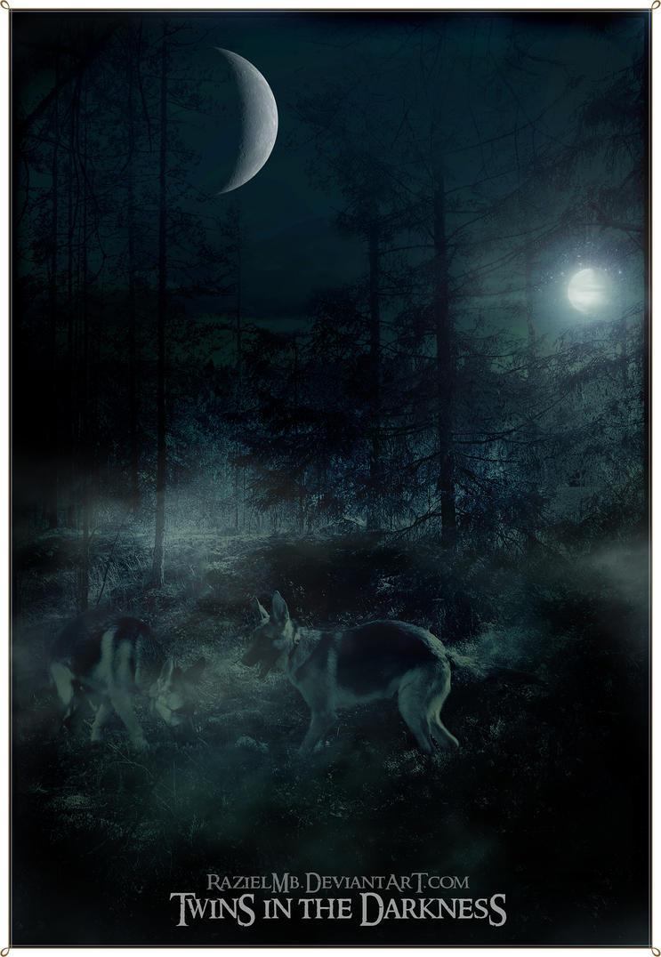 Twins in the Darkness by RazielMB
