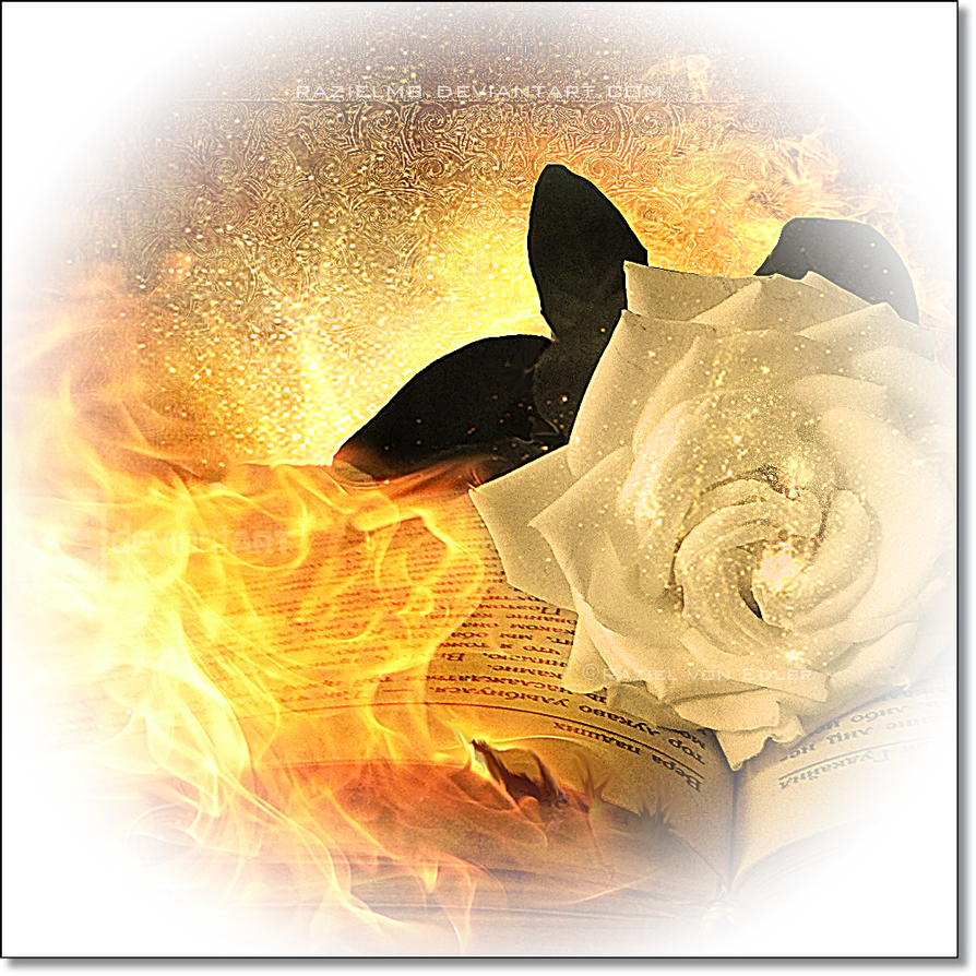 Fire book by RazielMB