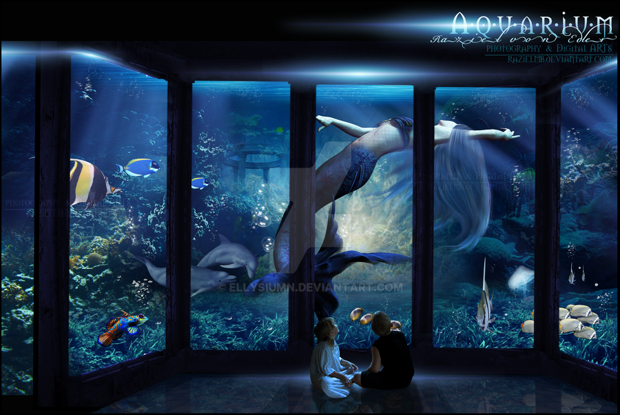 Aquarium by RazielMB