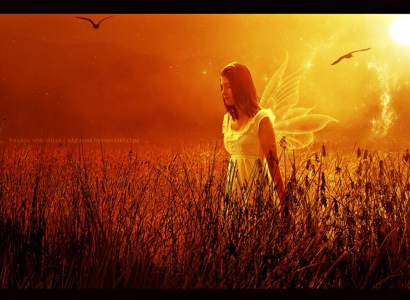 The sunset fairy by RazielMB