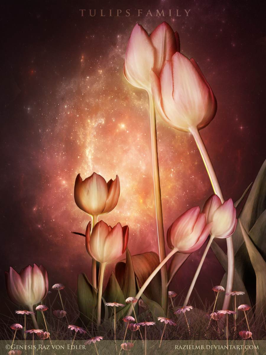 Tulips Family by GeneRazART