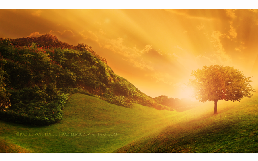 idée Photos ! Golden_light_by_razielmb-d7p8o4d