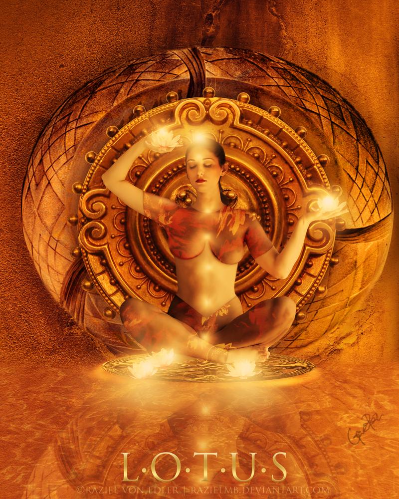 Lotus by RazielMB
