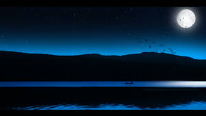 Birds flying in the night by Ellysiumn