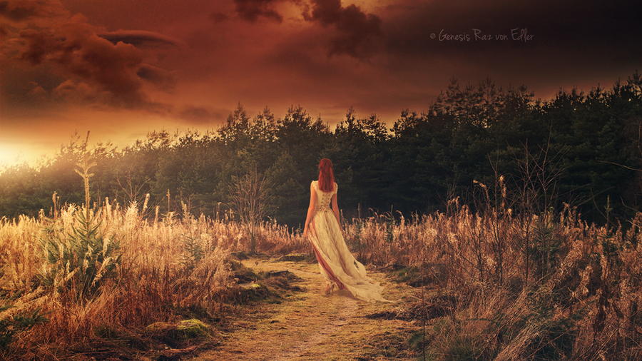 The shining Path by RazielMB