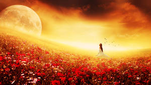 Field of Dreams by Ellysiumn