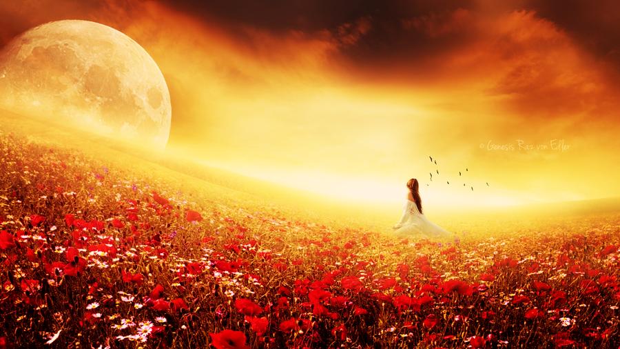 Field of Dreams by RazielMB