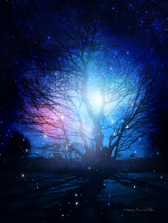 The Magic Tree by RazielMB