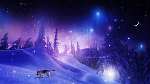 Rain of Stars by Ellysiumn