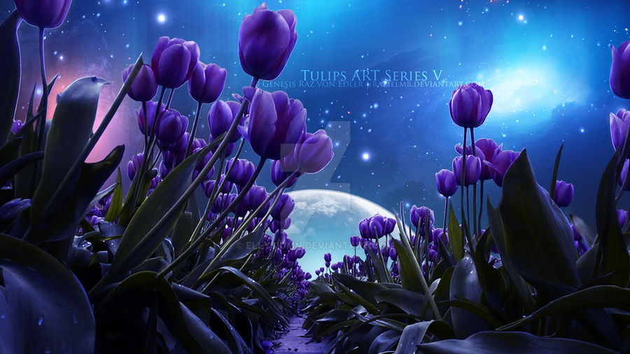 A place in my dreams by GeneRazART