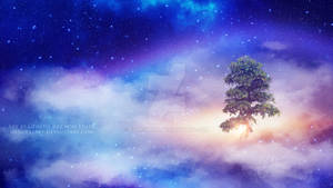 The tree above the clouds