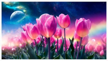 The dreamy tulips by Ellysiumn