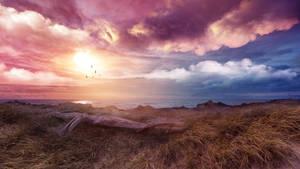 Under the warm sun by Ellysiumn