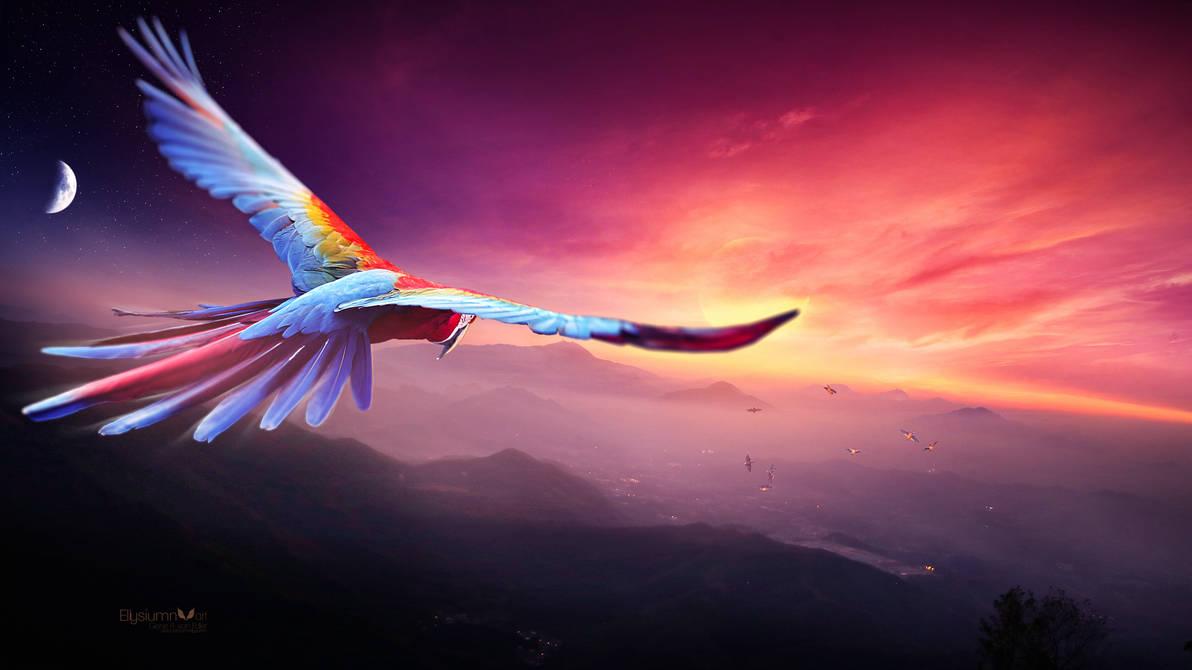 The Blue Macaw dreams by Ellysiumn