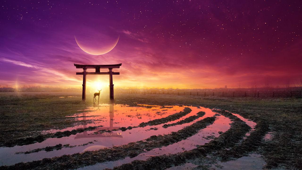 Звёздное небо и космос в картинках - Страница 30 Light_of_life_by_ellysiumn_dd9uivl-fullview.jpg?token=eyJ0eXAiOiJKV1QiLCJhbGciOiJIUzI1NiJ9.eyJzdWIiOiJ1cm46YXBwOjdlMGQxODg5ODIyNjQzNzNhNWYwZDQxNWVhMGQyNmUwIiwiaXNzIjoidXJuOmFwcDo3ZTBkMTg4OTgyMjY0MzczYTVmMGQ0MTVlYTBkMjZlMCIsIm9iaiI6W1t7ImhlaWdodCI6Ijw9NzIwIiwicGF0aCI6IlwvZlwvZmFhNDhkMmQtMTJjMi00M2QxLWJmMjMtYjVlOTk4NTc4MjViXC9kZDl1aXZsLTRkOWI1YzJmLWRmY2EtNDQ5OS05ZmIyLTFmOTBhOWUwZjYzNy5wbmciLCJ3aWR0aCI6Ijw9MTI4MCJ9XV0sImF1ZCI6WyJ1cm46c2VydmljZTppbWFnZS5vcGVyYXRpb25zIl19
