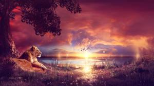 Enjoying the sunset by Ellysiumn