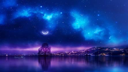 Shiny night