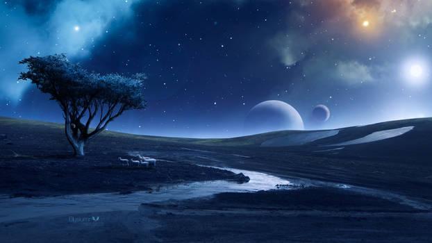 Stellar meadow