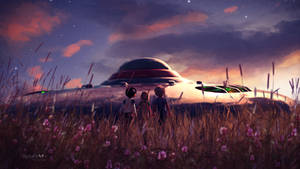 A UFO in the meadow