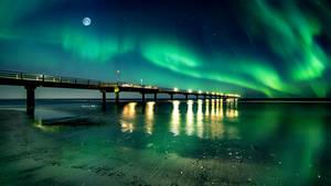 Bright green night