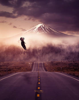 Road to dream