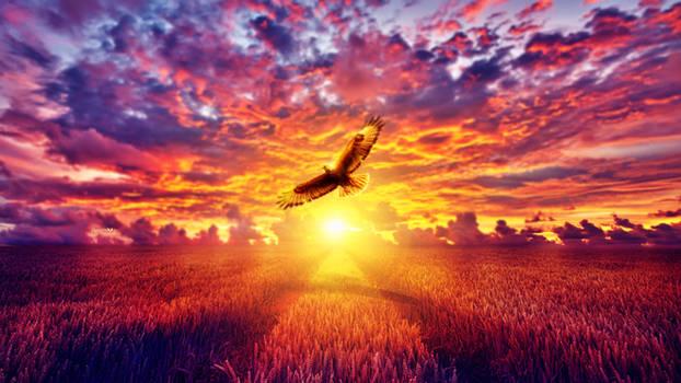 Flaming flight