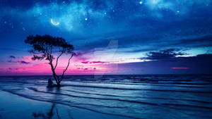 Thoughts at twilight