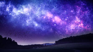 A place to stargaze