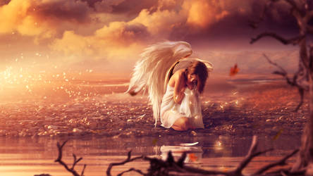 The lost angel II