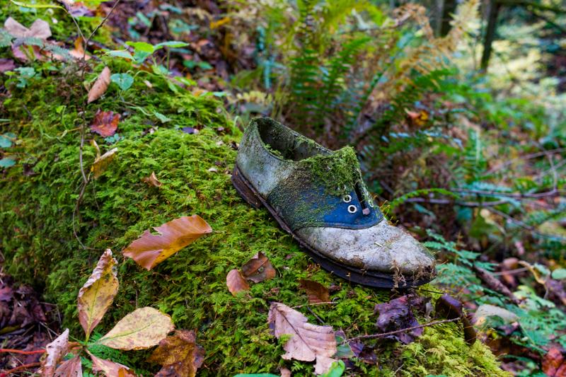 The Shoe by jasonksmith