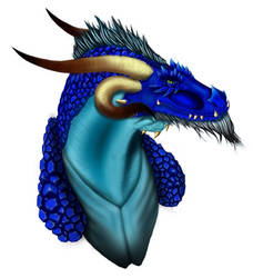 Dragon project: Head Updated