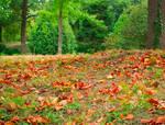 autumn in the middle of summer by guzelhavalarmahvetti