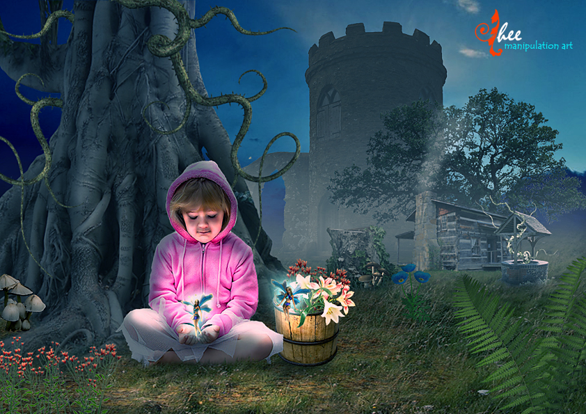 Wonderful Fairy - dheean