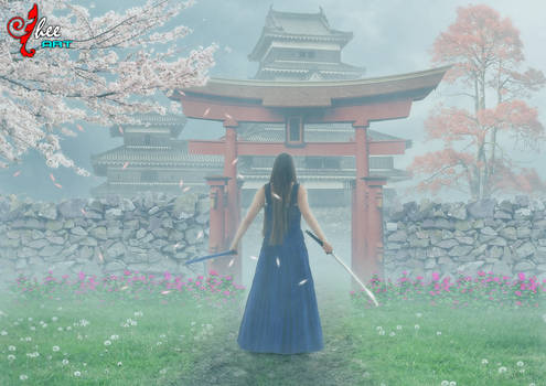 Samurai Revenge - dheean