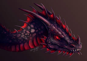 Dragon Commission by DragoNicaArt
