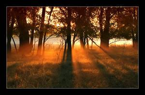 dawn by YoachimHUN
