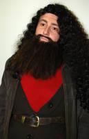 Facial Hair - Rubeus Hagrid by michellica