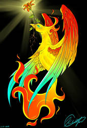 The Phoenix and the Fire Lily