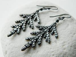 Thuja plicata Earrings by QuintessentialArts
