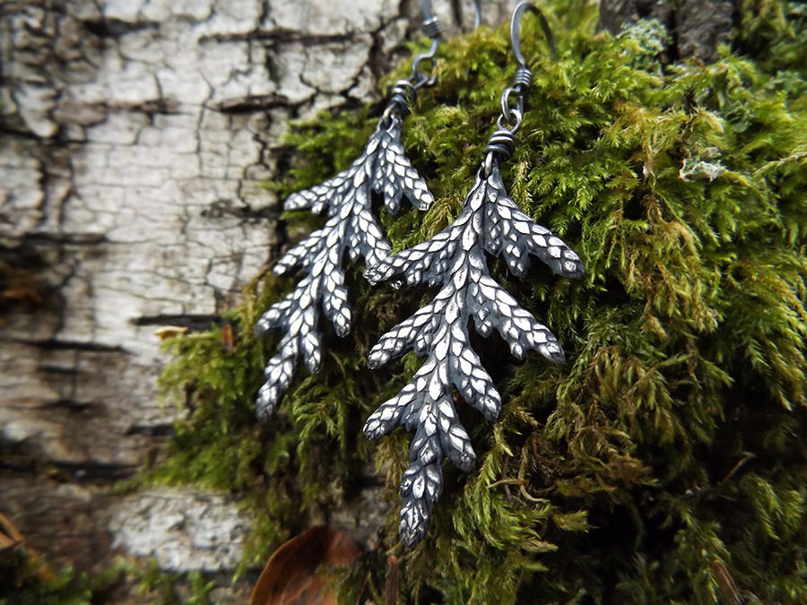 Thuja plicata Earrings by QuintessentialArts