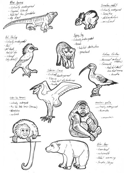 Endangered animals pt 2 by lemurkat on deviantart for Endangered species coloring pages