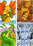 Dragons for All Seasons