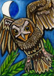 If your Totem is the Owl